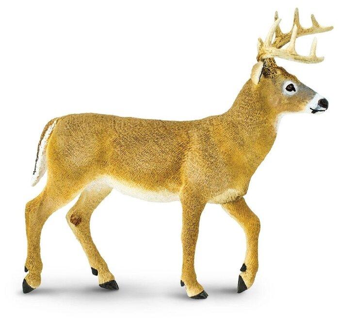 Фигурка Safari Ltd Белохвостый олень 113589