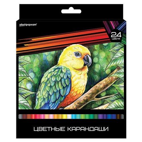 Купить SchoolФормат Набор цветных карандашей 24 цвета Дикая планета (КЦ24-ДП), Цветные карандаши