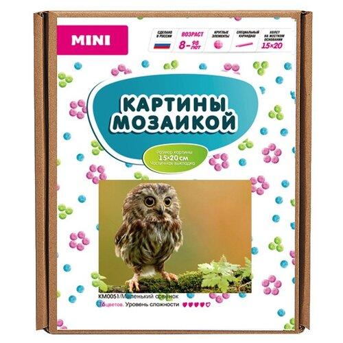 Купить Molly Набор алмазной вышивки Маленький совенок (KM0051) 15х20 см, Алмазная вышивка