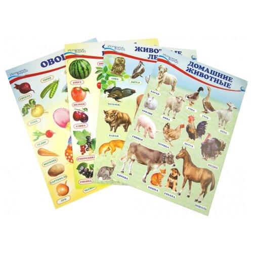 Купить Плакат Творческий Центр СФЕРА Домашние, лесные животные, фрукты и ягоды, овощи, Обучающие плакаты