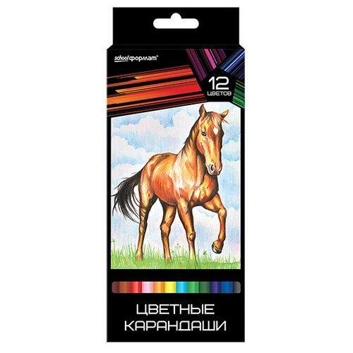 Купить SchoolФормат Набор цветных карандашей 12 цветов Дикая планета (КЦ12-ДП), Цветные карандаши