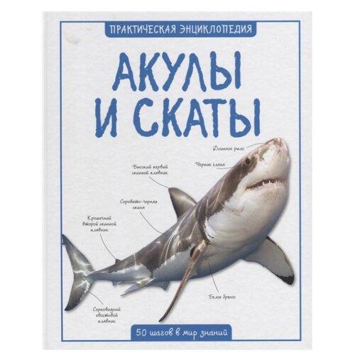 Бедуайер К. Акулы и скатыПознавательная литература<br>