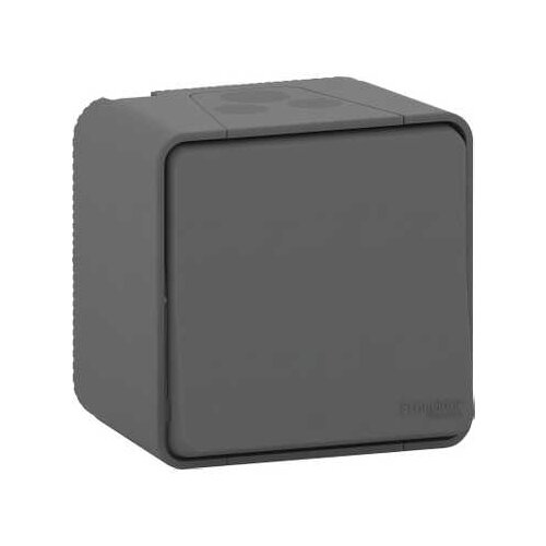 Кнопочный выключатель (кнопка) Schneider ElectricMUR35026, 10 А, серый