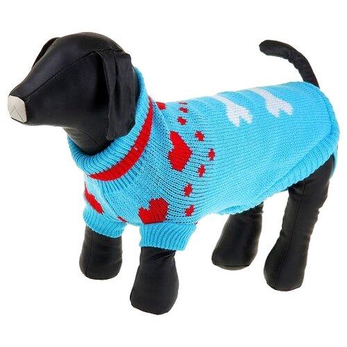 Свитер для собак Пижон размер 12 голубой