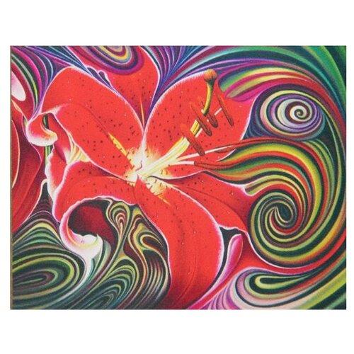 Алмазная живопись Набор алмазной вышивки Алая фантазия (АЖ-1395) 50х40 см