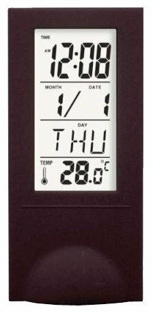 Термометр DigiOn PTS2098BL