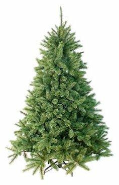 Triumph Tree Ель Лесная Красавица голубая 2.6