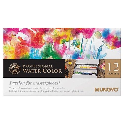 Купить MUNGYO Акварель профессиональная 12 цветов (MWPH12), Краски