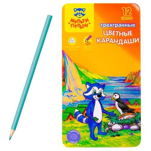 Мульти-Пульти Карандаши цветные Енот в Исландии 12 цветов (CP_14749) мульти пульти карандаши цветные енот в испании 24 цвета cp 10758