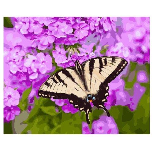 Купить ВанГогВоМне Картина по номерам Бабочка на цветке , 40х50 см (ZX 21985), Картины по номерам и контурам