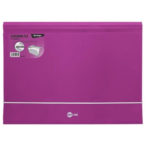 Купить Berlingo Папка на резинке Skyline А4, 13 отделений, пластик розовый, Файлы и папки