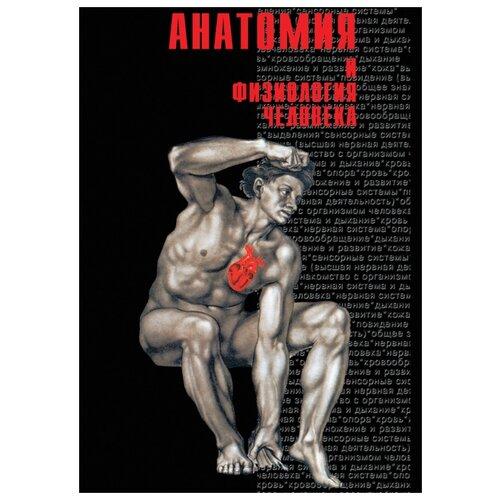 Анатомия и физиология человека. Часть 1