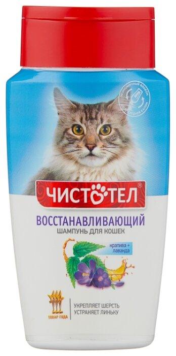 Шампунь ЧИСТОТЕЛ восстанавливающий для кошек 220 мл