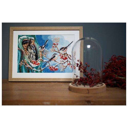 Купить Набор для вышивания Сова и синицы 33 х 22 см PN-0157405, Vervaco, Наборы для вышивания