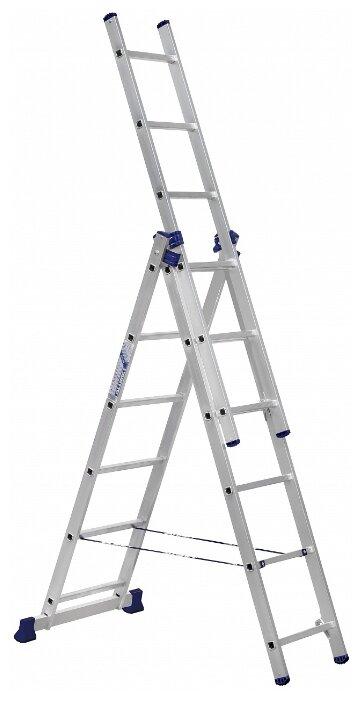 Лестница телескопическая 3-секционная ALUMET H3 5306 — купить по выгодной цене на Яндекс.Маркете