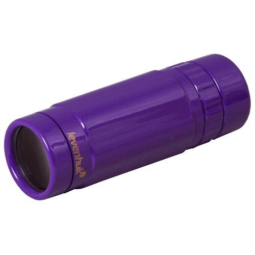 Монокуляр LEVENHUK Rainbow 8x25 фиолетовый