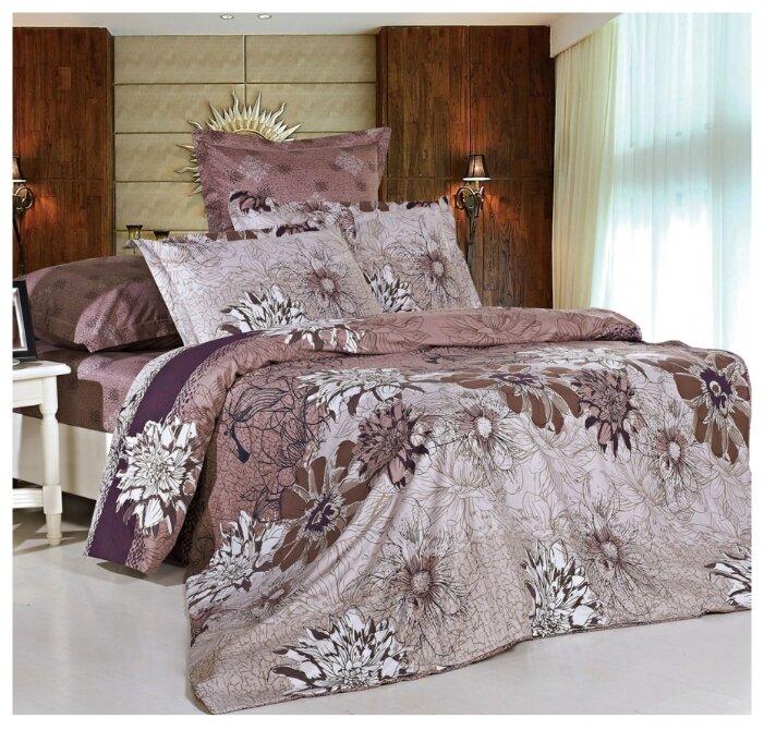 Постельное белье 1.5-спальное СайлиД B-123, сатин коричневый/серый