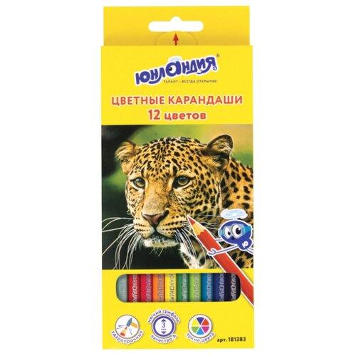 Купить Юнландия Карандаши цветные Мир животных 12 цветов (181383), Цветные карандаши