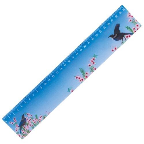 Купить BRAUBERG Линейка Птицы 3D 30 см (210580) голубой, Чертежные инструменты
