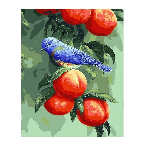 Фото - ВанГогВоМне Картина по номерам Птичка на персиках, 40х50 см (ZX 22085) картина по номерам 30 x 40 см krym fn11