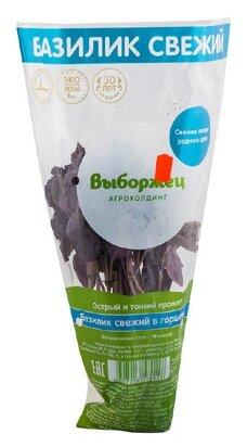 Выборжец Базилик в горшочке, пакет полиэтиленовый (Россия)