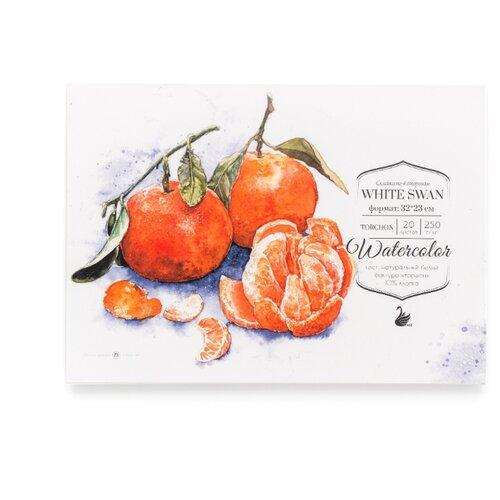 Купить Альбом для акварели Малевичъ White Swan 32 х 23 см, 250 г/м², 20 л., Альбомы для рисования