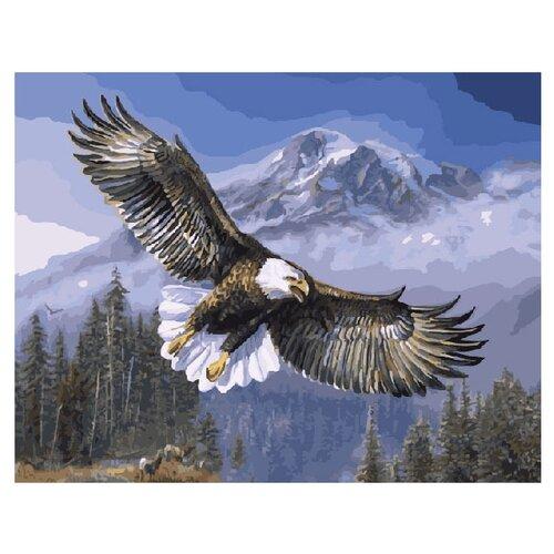 ВанГогВоМне Картина по номерам Полет орла, 40х50 см (ZX 20025) вангогвомне картина по номерам осенний вальс 40х50 см zx 21314
