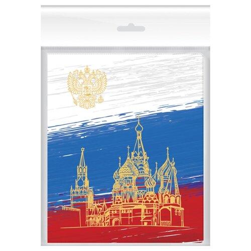 Купить ArtSpace Набор обложек для дневников и тетрадей 210x350 мм, 120 мкм, 3 штуки, с набором наклеек для подписи Российский школьник, Обложки