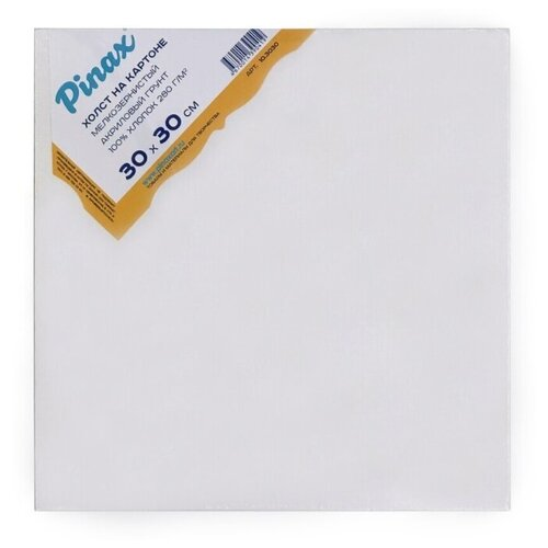 Купить Холст Pinax на картоне 30х30 см (10.3030), Холсты