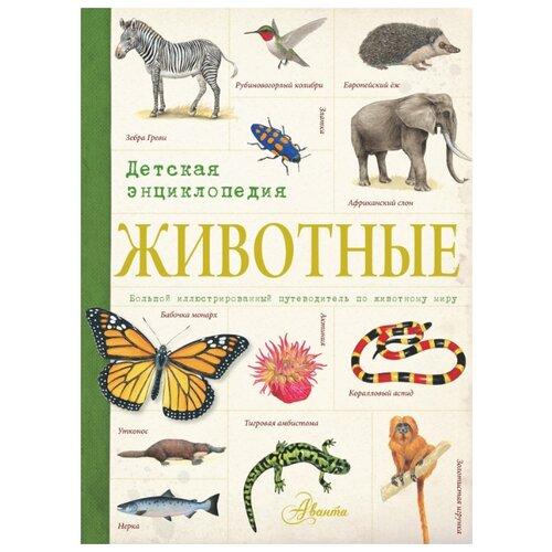 Купить Животные. Детская энциклопедия, Аванта (АСТ), Познавательная литература