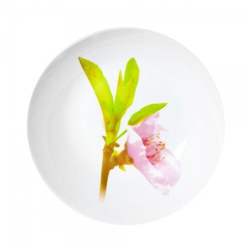 Luminarc Тарелка суповая Water Color 20 см белый/розовый/зеленыйТарелки<br>