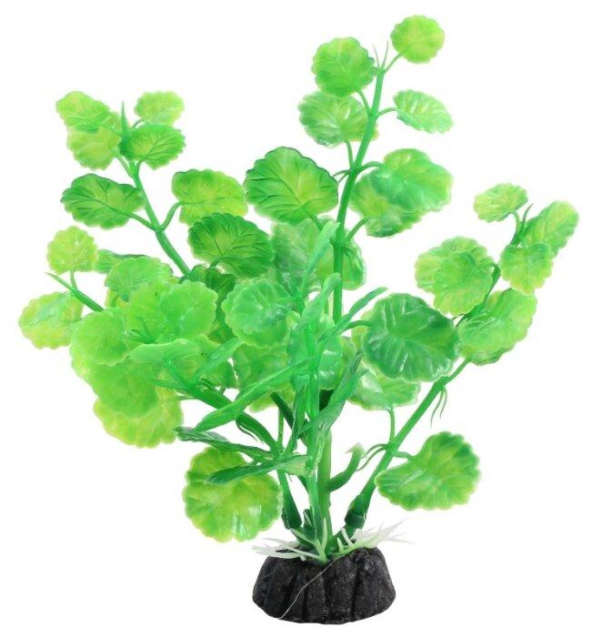 Искусственное растение Laguna Щитолистник 10 см