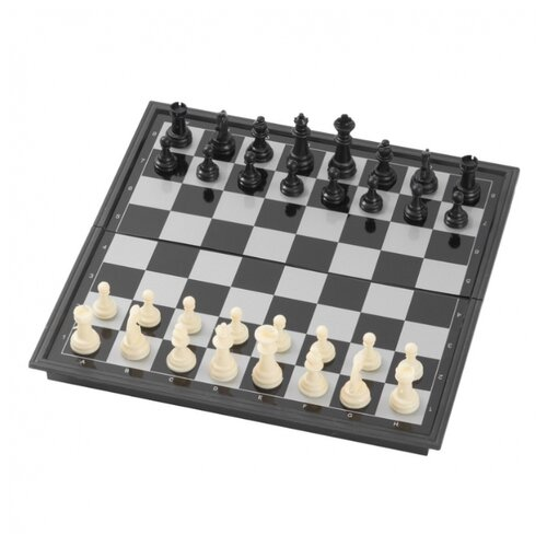 Partida Шахматы магнитные 25 см (mchess25)