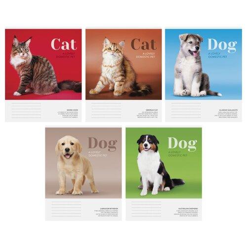 Купить ArtSpace Упаковка тетрадей Питомцы. Cat/Dog Т48к_24362, 10 шт./5 дизайнов, клетка, 48 л., Тетради