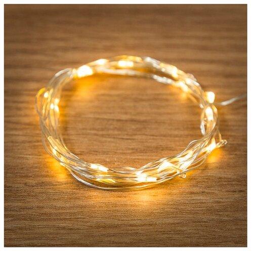 Гирлянда NEON-NIGHT Роса, 20 LED, 200 см, 20 ламп, теплый белый/прозрачный провод