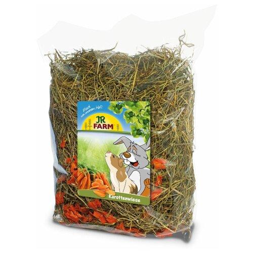 JR FARM Сено с добавлением моркови 500г jr farm 04886 зеленые колечки 500г