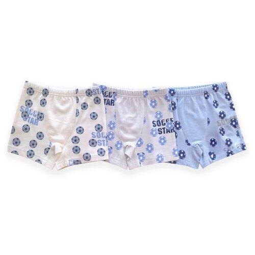 Купить Трусы BAYKAR 3 шт., размер 158/164, голубой/серый/молочный, Белье и пляжная мода