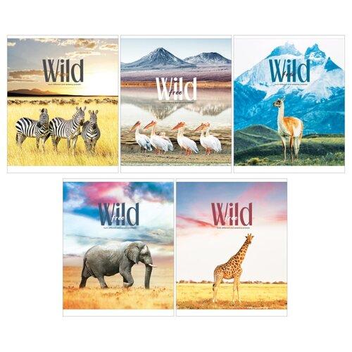 Купить ArtSpace Упаковка тетрадей Животные. Wild and cute Т80к_26689, 5 дизайнов/5 шт., клетка, 80 л., Тетради