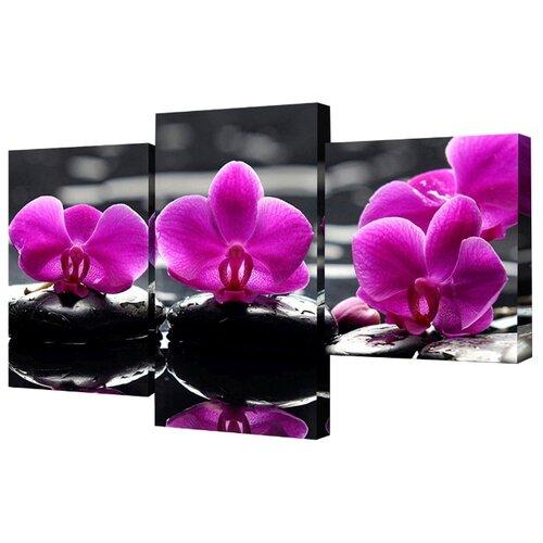 Модульная картина Toplight TL-MM1038 78х50 см картина бордовые тюльпаны трихтин модульная 2943431 125 х 73 см