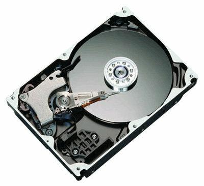 Жесткий диск Maxtor STM31000340AS