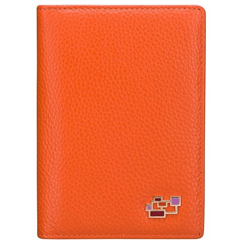 Обложка для автодокументов Dr.Koffer X510177-82-58A, оранжевый