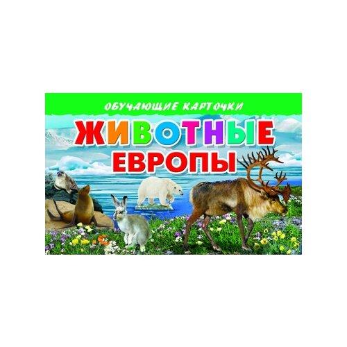 Купить Животные Европы, Литур, Учебные пособия
