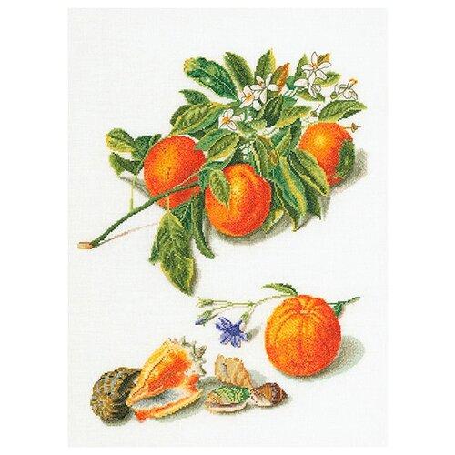 Купить Набор для вышивания Апельсины и мандарины, канва лён 36 ct, Thea Gouverneur, Наборы для вышивания