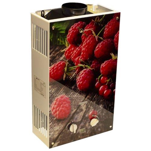 Фото - Проточный газовый водонагреватель Wert 10EG Berry проточный газовый водонагреватель bosch wr 15 2p23