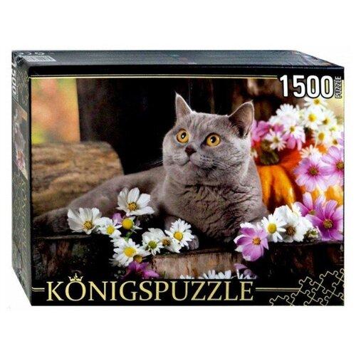 цена на Пазл Рыжий кот Konigspuzzle Британский кот (ГИК1500-8478), 1500 дет.