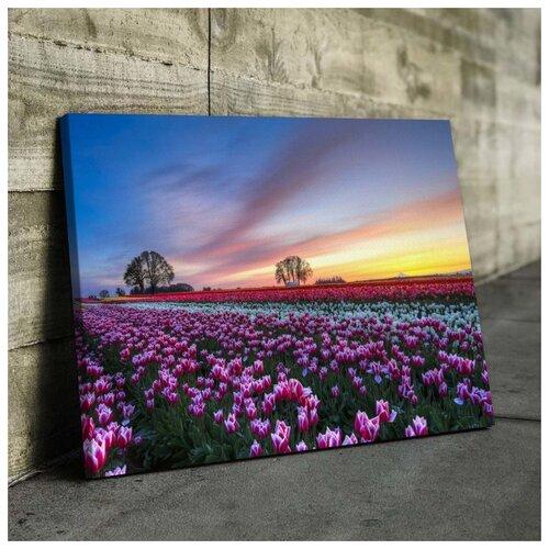 Картина Тюльпановое Поле 50х70 см. натуральный холст
