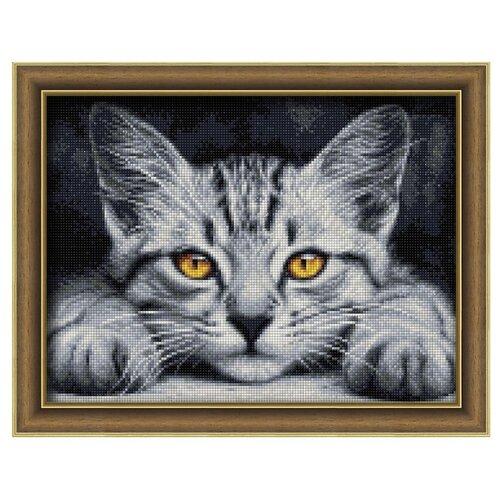 Купить Алмазная живопись Набор алмазной вышивки Желтоглазый котенок (АЖ-1807) 40х30 см, Алмазная вышивка