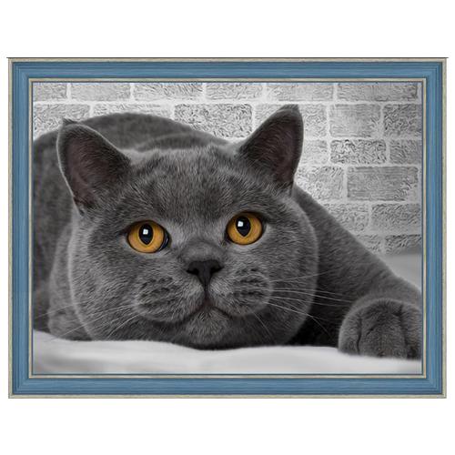 Купить Алмазная живопись Набор алмазной вышивки Британский кот (АЖ-1463) 40х30 см, Алмазная вышивка