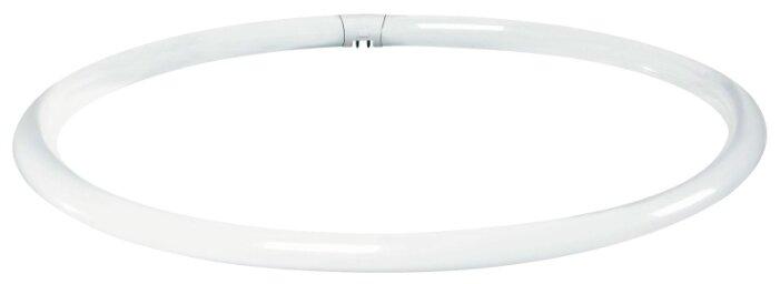 Лампа газоразрядная Paulmann 88440, G10q, T9, 40Вт