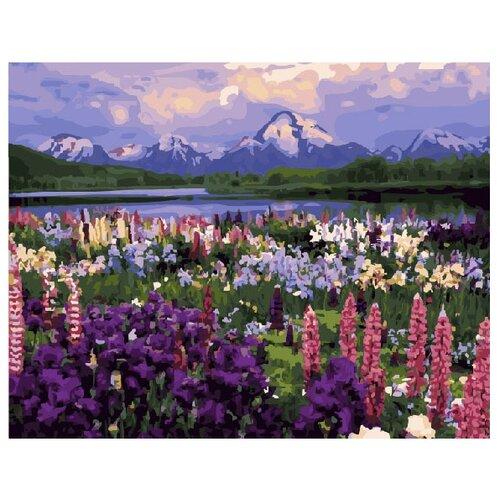 ВанГогВоМне Картина по номерам Долина цветов, 40х50 см (ZX 10154) картина по номерам вангогвомне голубая ваза